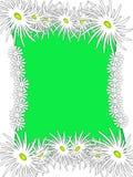 Verde floral del marco Imagenes de archivo