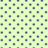Verde florescido/azul do fundo foto de stock