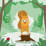 Verde Forest Colorful Flat di sorriso dello scoiattolo del fumetto illustrazione vettoriale