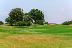 Verde fresco del campo del golf Fotografía de archivo