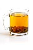 Verde frondoso del té en taza Imagenes de archivo