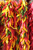 Verde giallo rosso Chili Pepper Ristras Hanging Immagine Stock Libera da Diritti