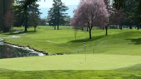 Verde Golfing do campo de golfe BC Fotos de Stock