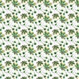 Verde herbario floral brillante gráfico maravilloso hermoso mA del otoño Imagen de archivo libre de regalías