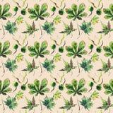 Verde herbario floral brillante gráfico maravilloso hermoso mA del otoño Imagenes de archivo