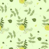 Verde inconsútil del modelo del verano con las flores amarillas Ilustraci?n del vector libre illustration