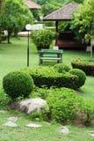 Verde luxúria, jardinando, ajardinando, decoração do parque Imagens de Stock Royalty Free