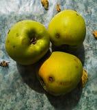 Verde mela Immagini Stock Libere da Diritti