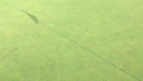 Verde mettente di golf con il bastone della bandiera stock footage