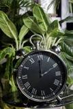 Verde negro casero de la alarma Imágenes de archivo libres de regalías