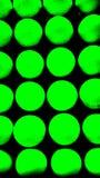 Verde no preto Fotografia de Stock Royalty Free