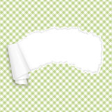 Verde quadriculado de papel aberto rasgado Fotos de Stock