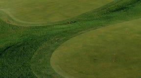 Verde que pone/papel pintado para los amantes del golf Fotos de archivo