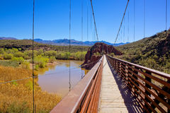Verde River sheep bridge Royalty Free Stock Photography