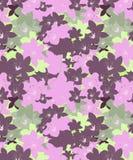 Verde, roxo, projeto sem emenda floral das orquídeas do rosa ilustração stock