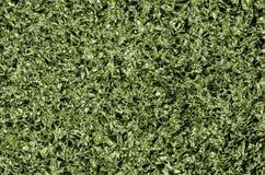 Verde sgualcito del di alluminio Fotografia Stock