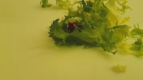 Verde sulle gocce di un fondo di bianco, colpo lento dell'insalata video d archivio
