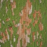 Verde velho pintado de madeira fotografia de stock royalty free