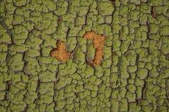 Verde velho pintado de madeira imagens de stock