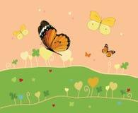 Verde, verano y mariposas del prado Foto de archivo libre de regalías