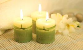 Verde y blanco Fotos de archivo libres de regalías