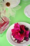 Verde y color de rosa Imagen de archivo libre de regalías