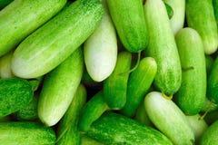 Verde y comida del pepino Foto de archivo