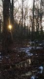 Verdeel de zonsopgang stock foto's