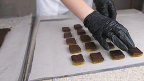 Verdeel vullingen voor de praline van het chocoladesuikergoed met abrikozenzaden gebruikend spatel Zet het op bakkersblad De hand stock video