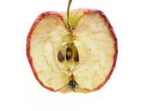 Verdeelde appel stock foto's