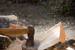 Verdelend hout Stock Afbeeldingen