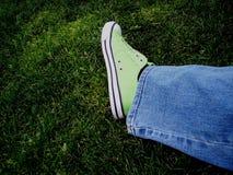 verdes Fotografía de archivo libre de regalías