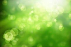 Verdes abstratos da mola do fundo da natureza Fotos de Stock