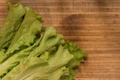 Verdes da salada Fotografia de Stock