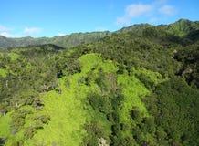 Verdes de Kauai Fotografia de Stock Royalty Free