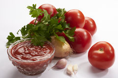 Verdes de la cebolla de la salsa de tomate Fotos de archivo libres de regalías