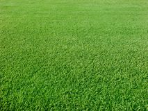 Verdes del golf Foto de archivo
