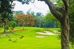 Verdes del golf Fotografía de archivo