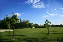 Verdes do campo de golfe imagem de stock