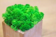 Verdes en una decoración de madera de la tabla foto de archivo libre de regalías
