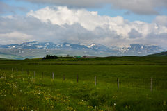 Verdes enormes esvaziam o campo com vista à montanha e às casas Foto de Stock Royalty Free