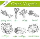 Verdes fijados stock de ilustración