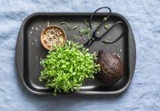 Verdes micro Ensalada del berro, aguacate, semillas de lino - ingrediente alimentario estupendo, visión superior Fotos de archivo