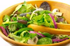 Verdes misturados e salada do cogumelo Imagem de Stock Royalty Free
