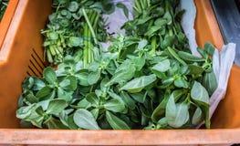Verdes no mercado super imagens de stock