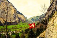 Verdes suizos Foto de archivo