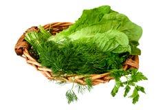Verdes, vegetais na cesta Fotos de Stock