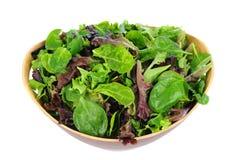 Verdi dell'insalata in ciotola di legno Fotografie Stock Libere da Diritti