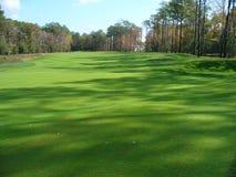 Verdi di terreno da golf Immagini Stock