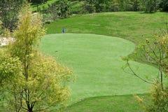 Verdi e bandierine di terreno da golf fotografia stock libera da diritti